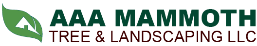AAA Mammoth Tree & Landscaping LLC